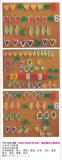 YH-16416B  10以内与20以内水果、蔬菜磁性计算教具