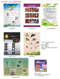 文化墙:幼儿科学教育挂图(二)17-596A